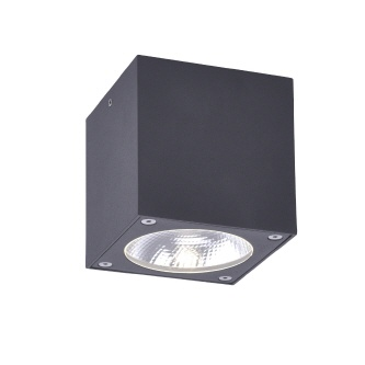 "Paul Neuhaus LED ""Georg"" R"